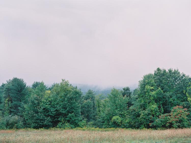 Longlook Farm-5.jpg