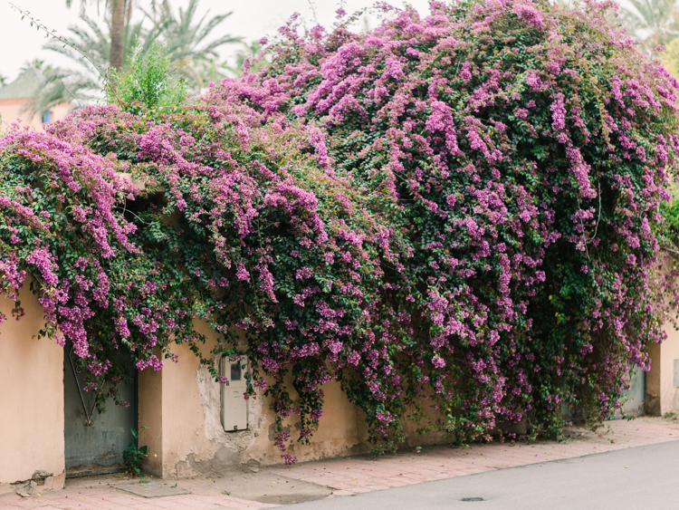 marrakech morocco-7.jpg
