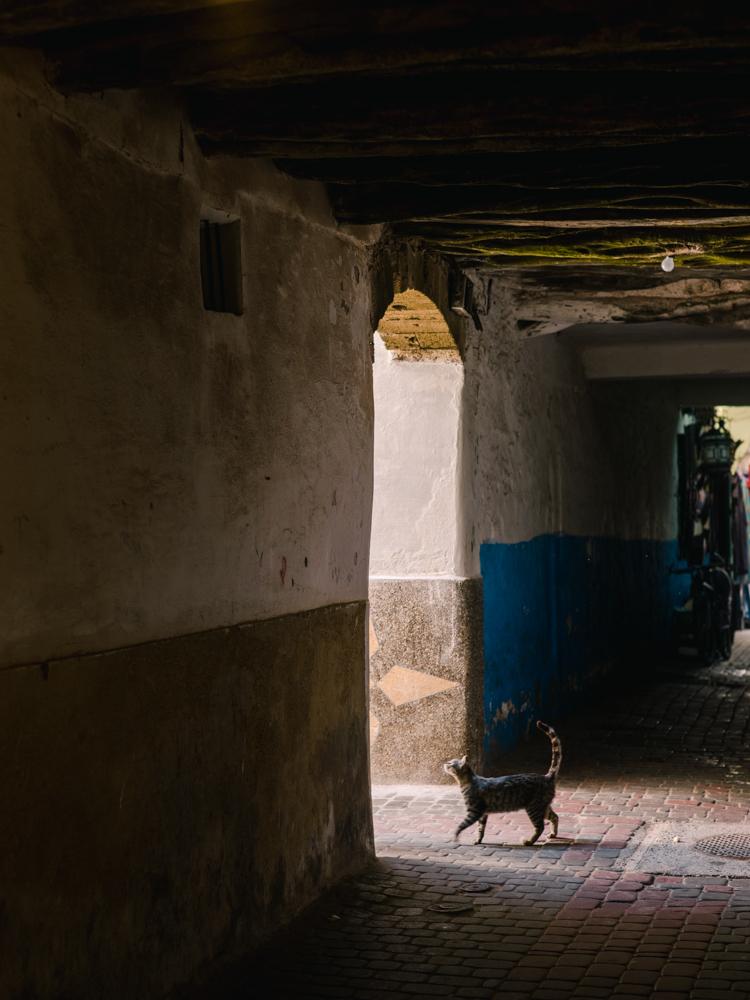 marrakech morocco-13.jpg