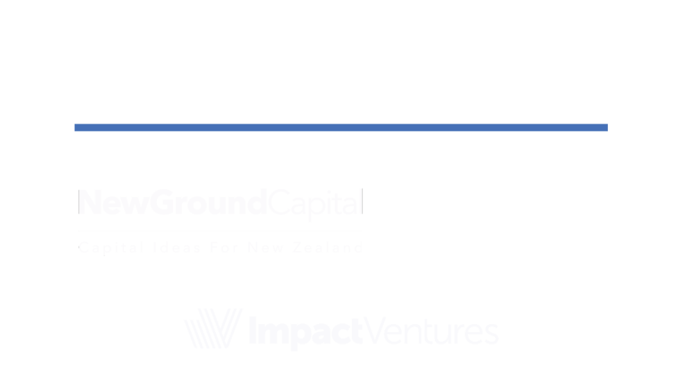 IE-Fund-Brand4.png