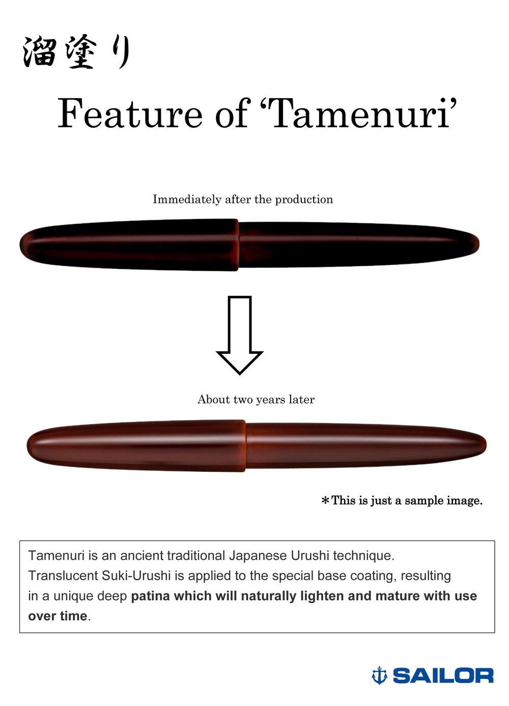 Feature of Tamenuri.jpg