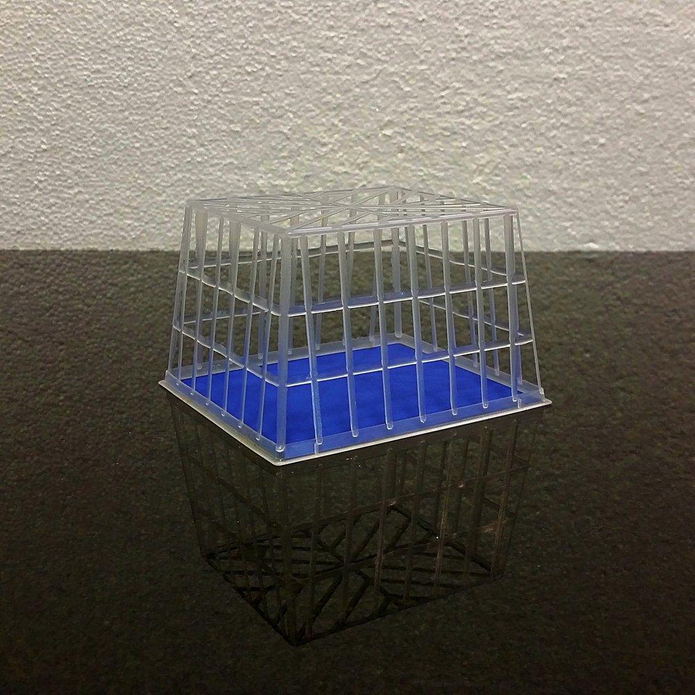 blue berry basket 2.jpg