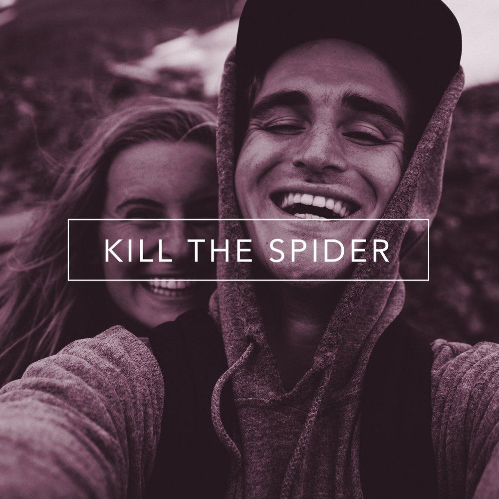 Facebook Kill the Spider.jpg