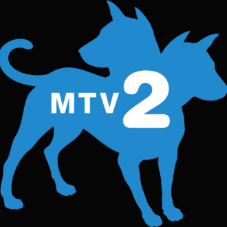 mtv2.png