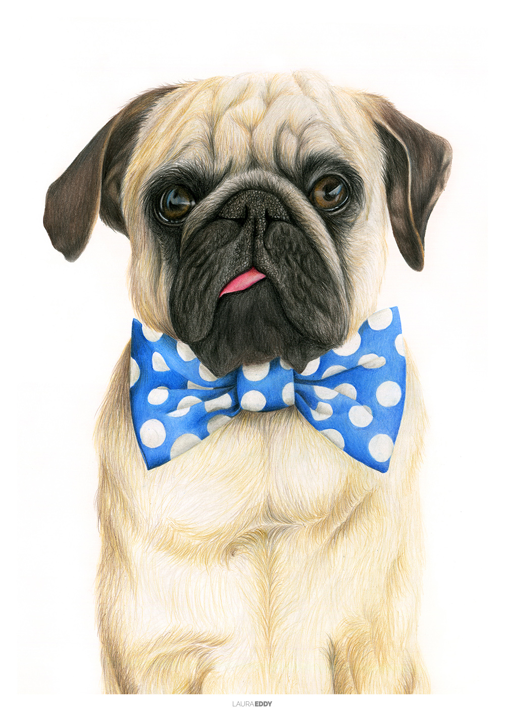 laura-eddy-drawing-bowtie-puglife-branded.jpg