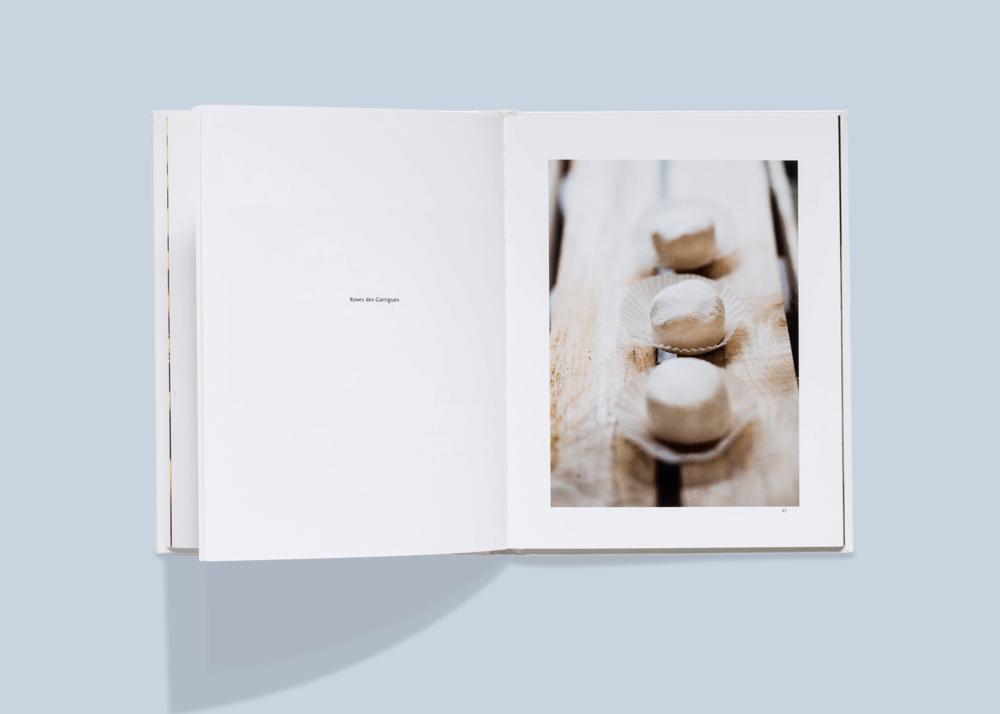 lilla-boken-om-champagne_2.png