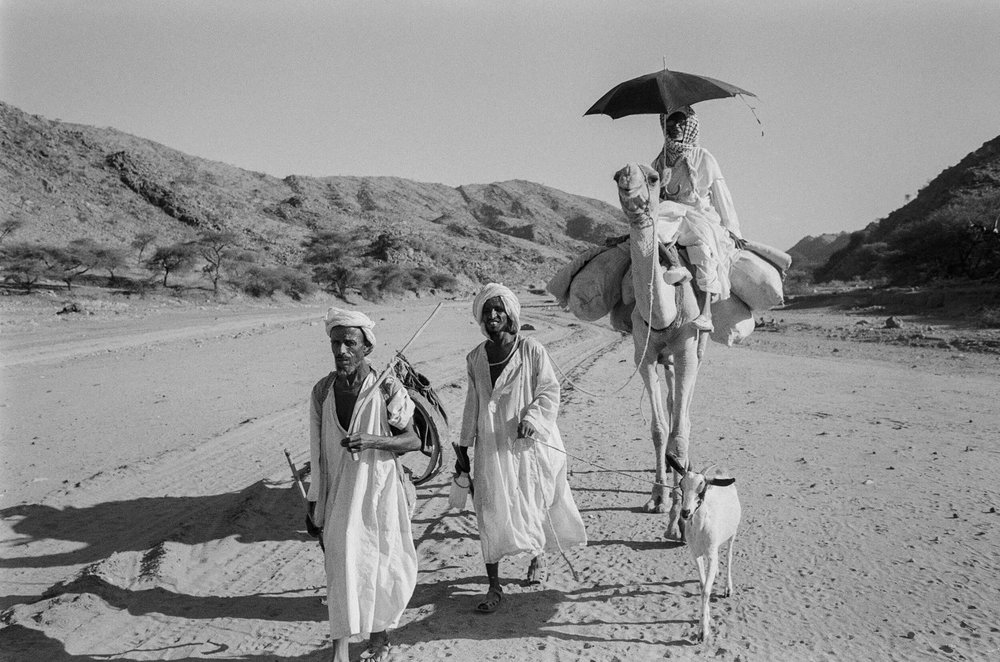 On the way back home from Sudan when the war is over after thirty  years.