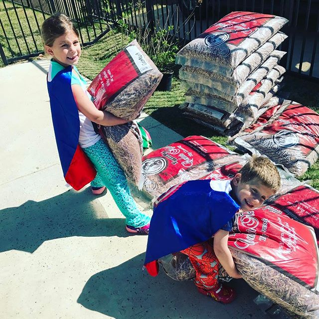 Working on a new landscaping adventure starring Superman & Captain America called...wait for it... Mulch Ado About Nothing🤣 I was surprised Marvel & DC agreed to it but it's such a good idea they couldn't resist.