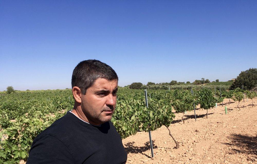 Tinto Velasco vines + Samuel