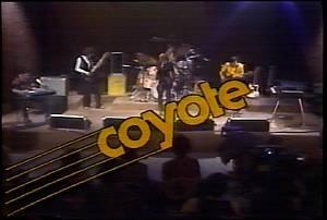 coyote.0001.jpg
