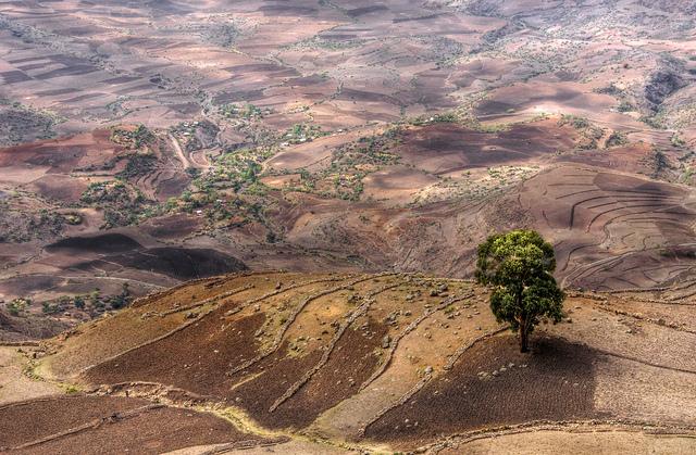 An Ethiopian landscape.