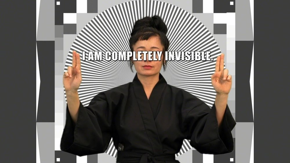 Hito Steyerl, How Not to be Seen: A Fucking Didactic Educational .MOV File , 2013