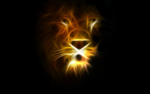 lion_wallpaper3367