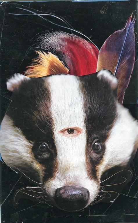 Badger-Medicine.jpg