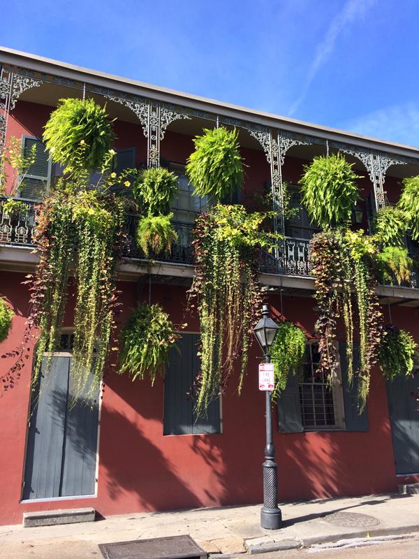 New_Orleans_22.jpg