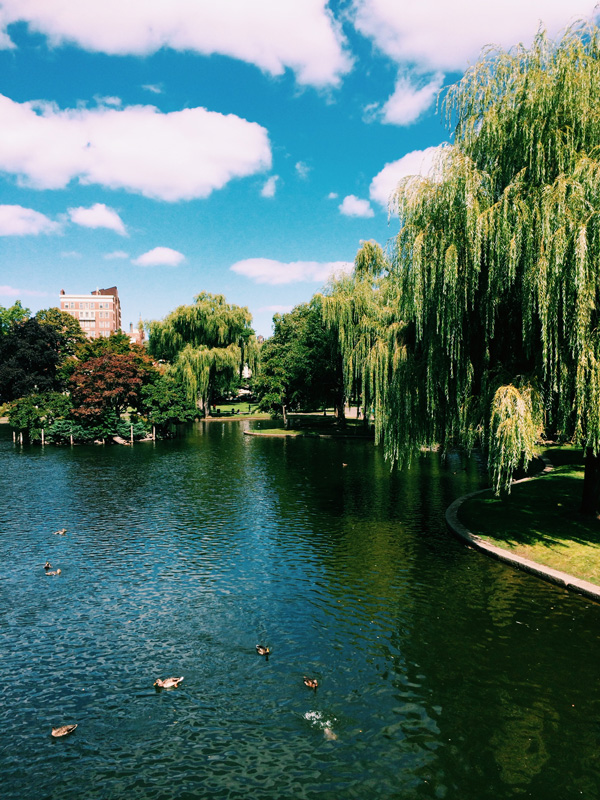 Boston_6.jpg