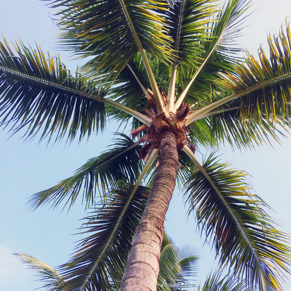 Trip-to-Florida_15.jpg