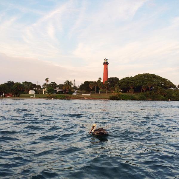 Trip-to-Florida_16.jpg