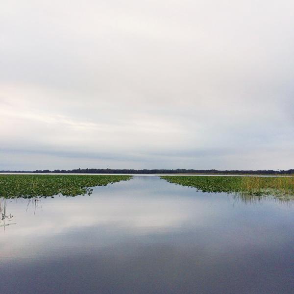 Trip-to-Florida_8.jpg
