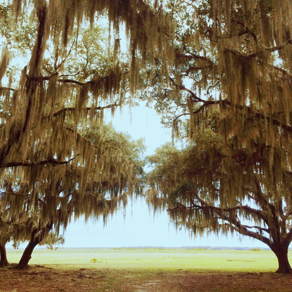 Trip-to-Florida_9.jpg