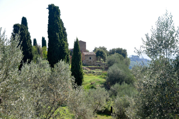 Italy-6-e1443535133848.jpg
