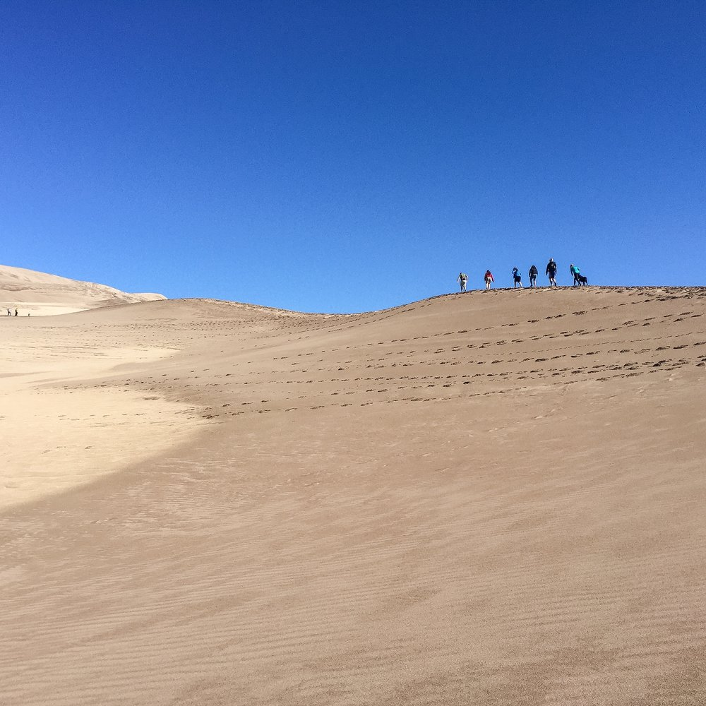 Ascending to High Dune