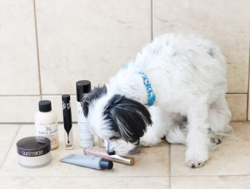 All of these products are Mylie approved as well! Because your dog's opinion is really important, right?