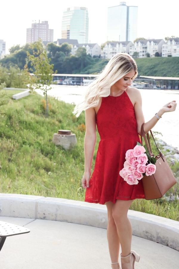Red Bailey Blue Skater Dress-7.jpg