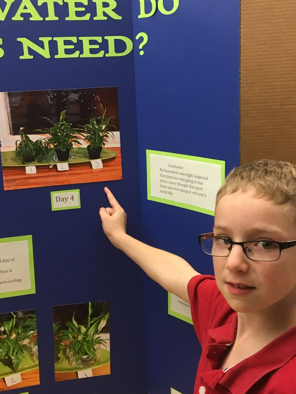 Scientist Isaac explains his hypothesis at this week's Third Grade Science Fair.