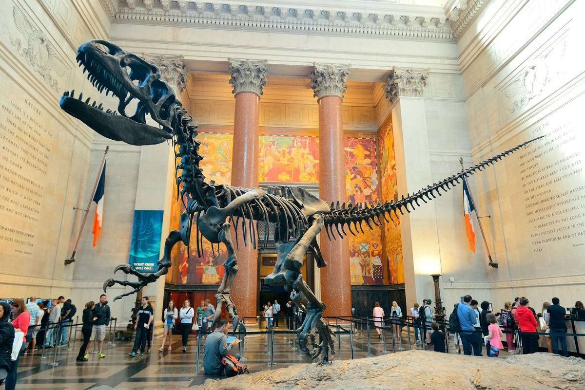 1-american-museum-of-natural-history-dinasour