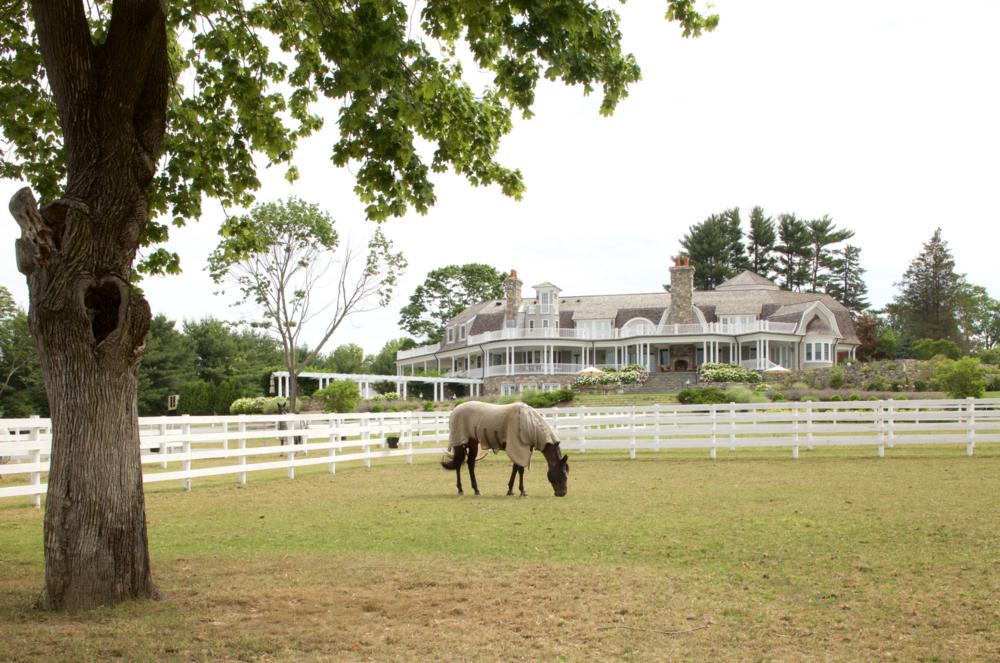 horse farm 3.png