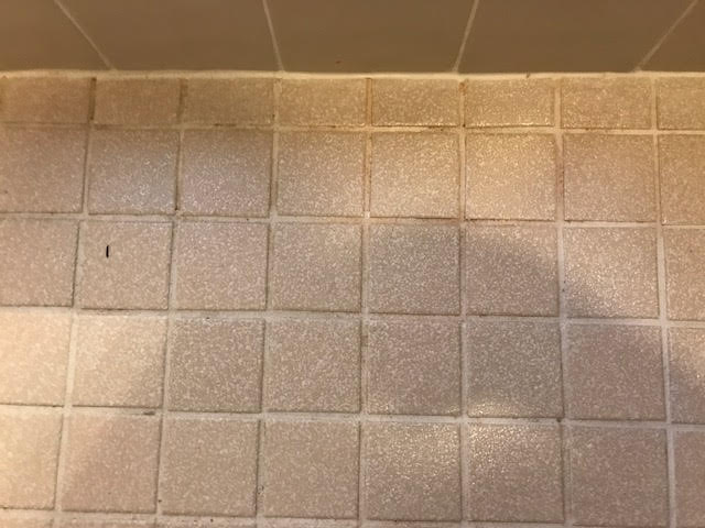 Blog Mrs Grout - Cleaning stained bathroom tiles