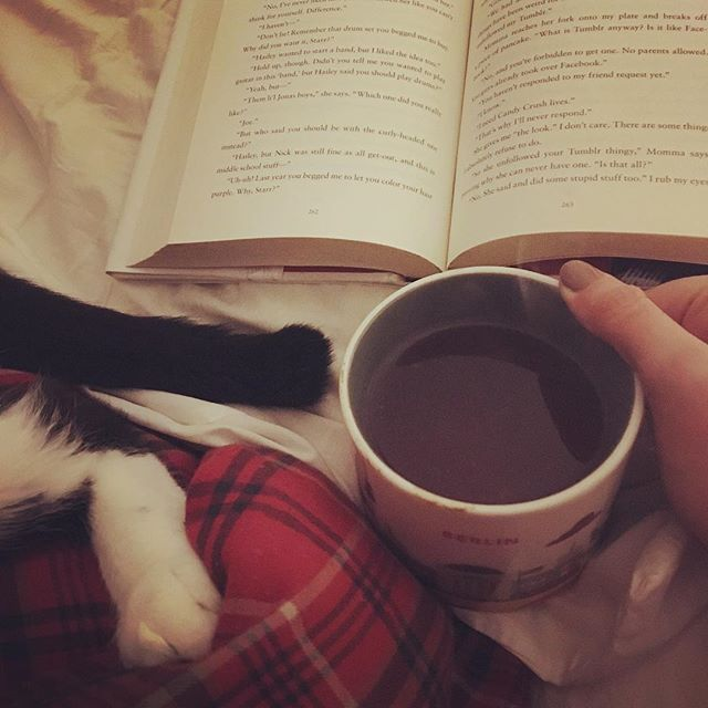 Some candles, a cup of herbal tea, a sleepy kitty and a good book. Now that sparks joy! • • • #hygge #minimalism #sparkjoy #konmari #minimalistlifestyle #simplelife #books #catsofinstagram #tea #tealover