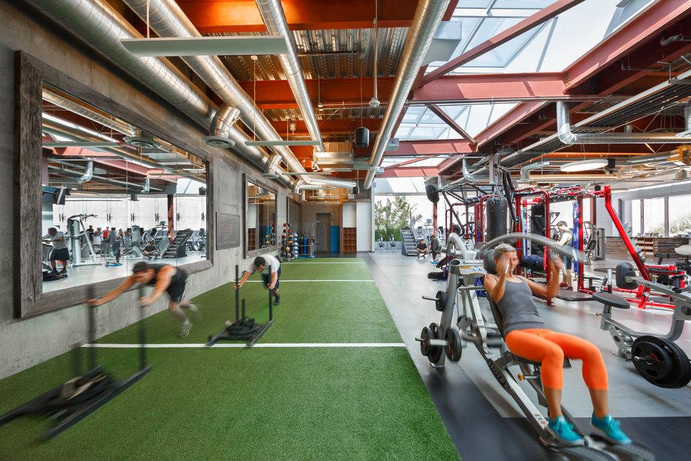 004 Alexandria Gym.jpg