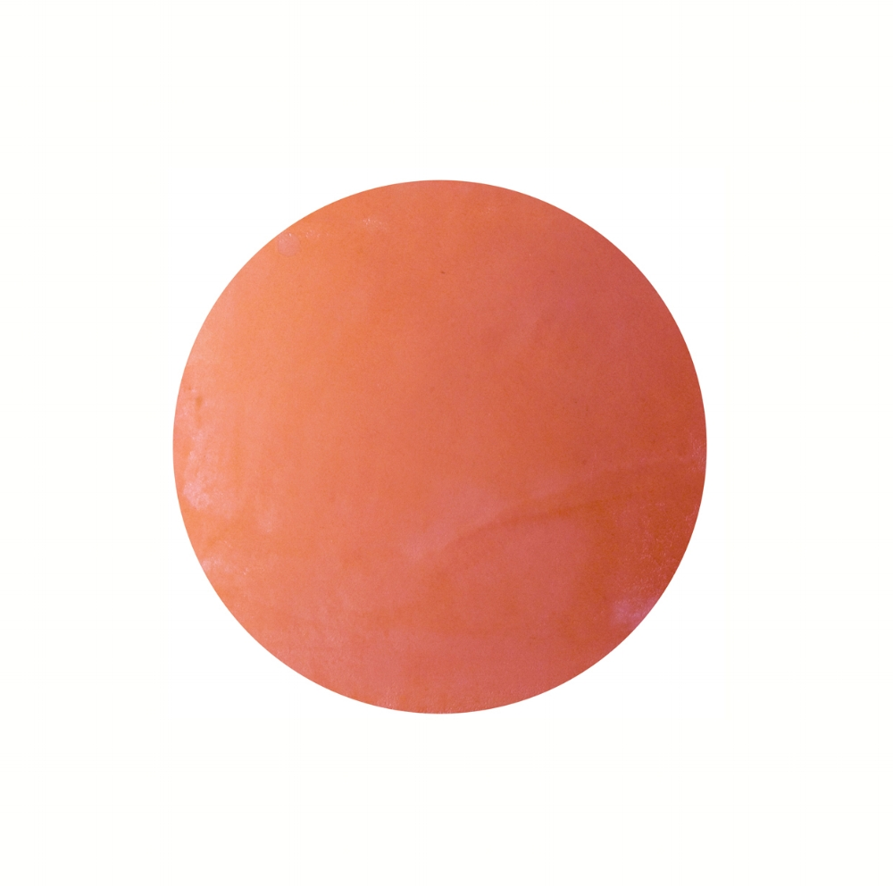 OI Logo Orange.jpg