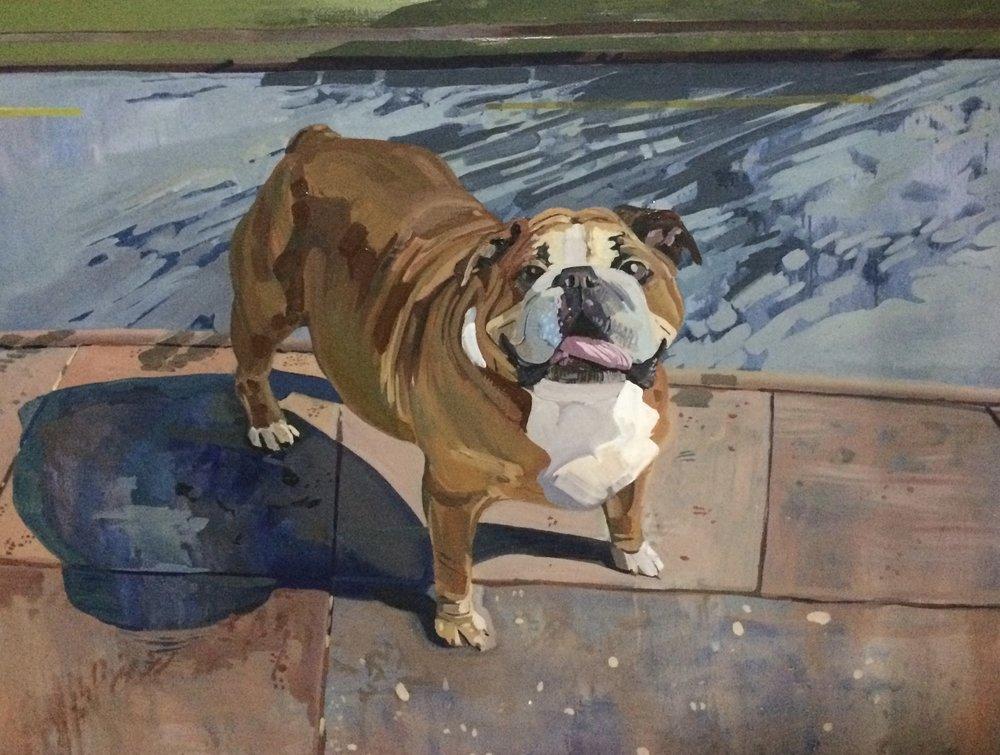 Hank the bulldog portrait, 2013, oil on canvas