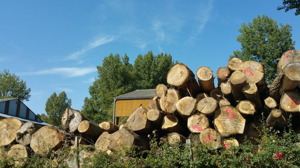 "When oak tree's are cut and sawn into beams, they start off as what is known as ""green oak"". Green oak means they are fresh sawn and very high in the tree's sap moisture content. These beams are great for oak framing, however they do dry out. When oak beams dry out they split, crack and move. This can cause issues if using the beams for singular sections, aesthetic beams, fireplace mantels or smaller frames."