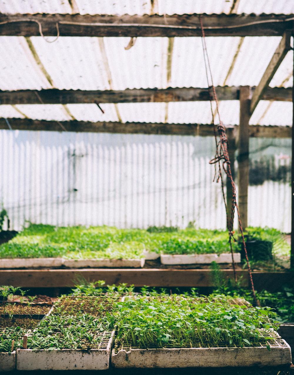 erinscott_farmsteads-15.jpg