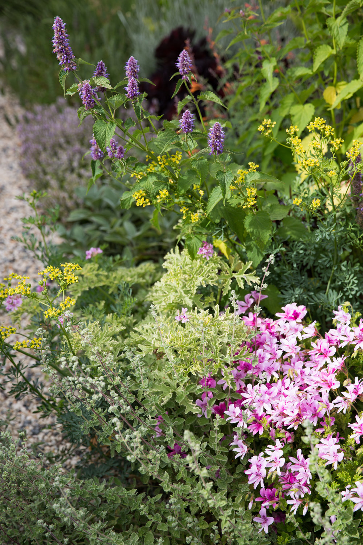 erinscottphotography_homesteaddesigncollective-26.jpg