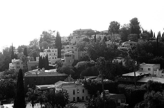 Old Neighborhood, Hollywood Hills, Dec. 2016 #35mm #blackandwhite #film #photography #losangeles #california . . . . . . #filmisnotdead #staybrokeshootfilm #analog #lomography #filmphotography #blackandwhitephotography #vsco #thehills #ilfordfilm #ilfordphoto #hollywood