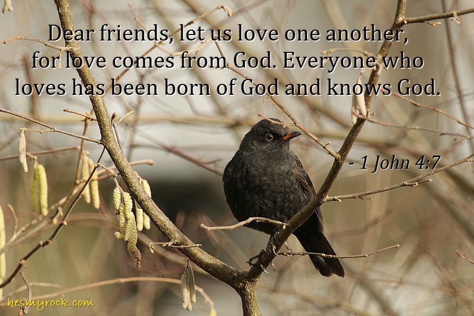 1 John 4:7
