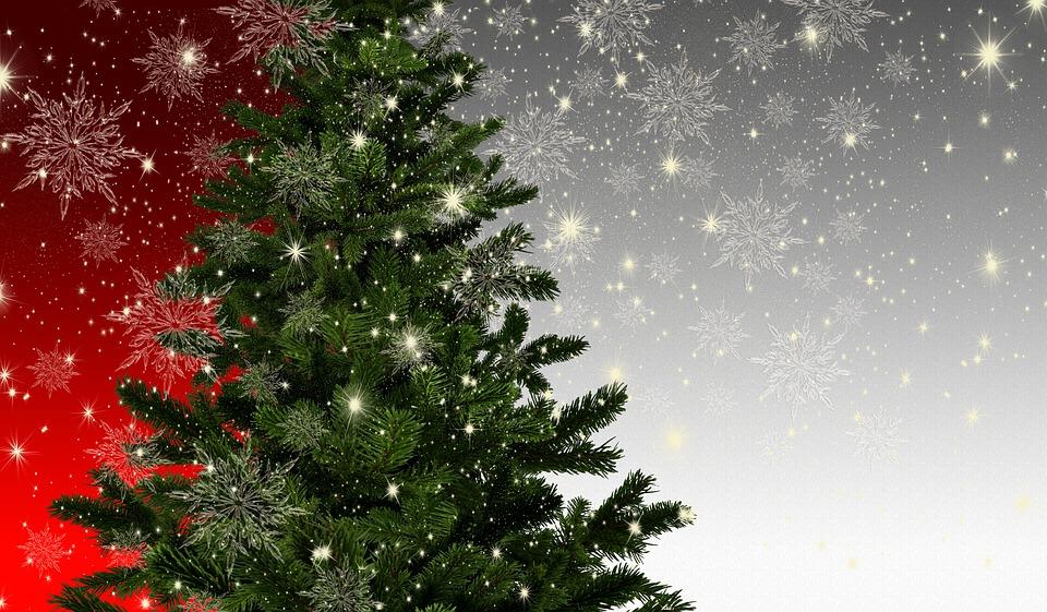 christmas-3833492_960_720.jpg