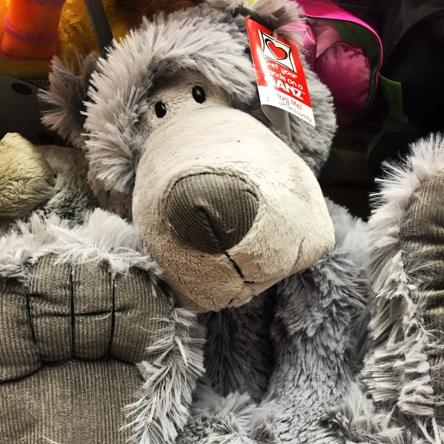New from Ganz! An adorable long nose bear that your child will just love! #littletoyshop #neworleans #bear #adorable #nola #frenchquarter #lovable
