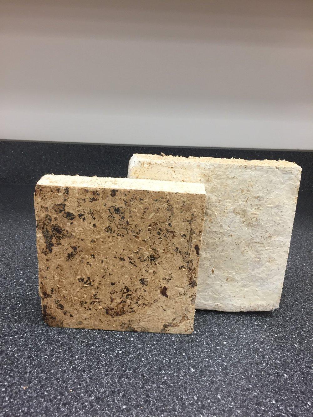Myco-matériaux de bois et champignons