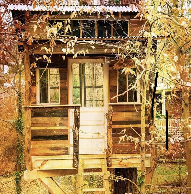 Treehouse 5.jpg