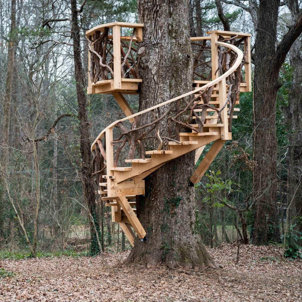 Nautilus Treehouse - downsized AGAIN.jpg