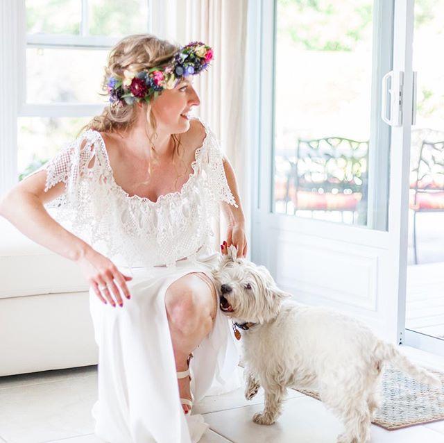 Trouvez le chien blanc sur fond blanc. #weddingphotography #doglover #bohostyle #bohowedding