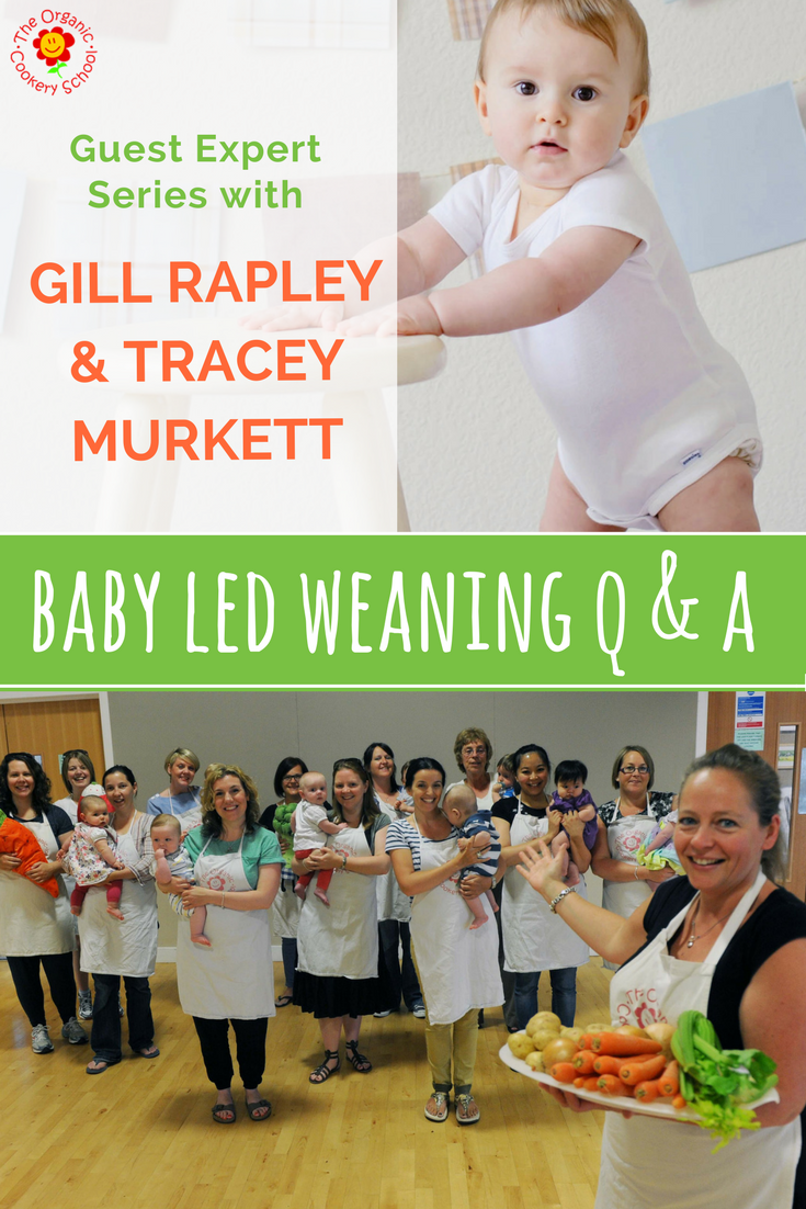 BABY LED WEANING Q & A WITH GILL RAPLEY.png
