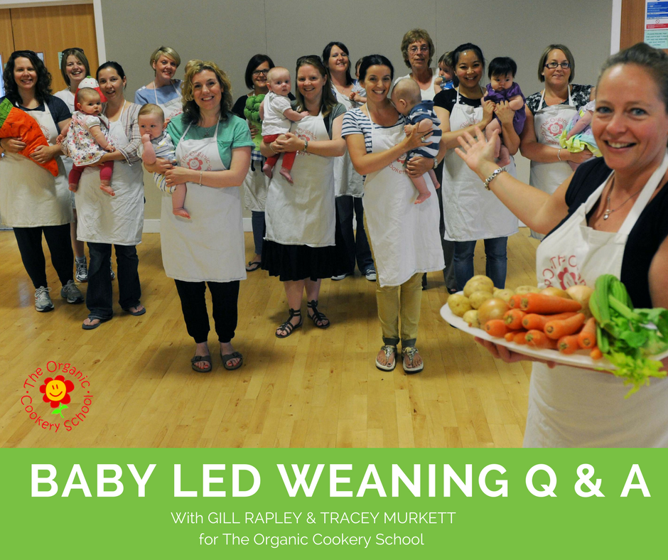 BABY LED WEANING Q & A GILL RAPLEY (1).png