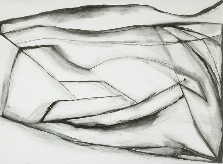 "Frozen Bird , charcoal on paper, 22"" x 30"", 2010"